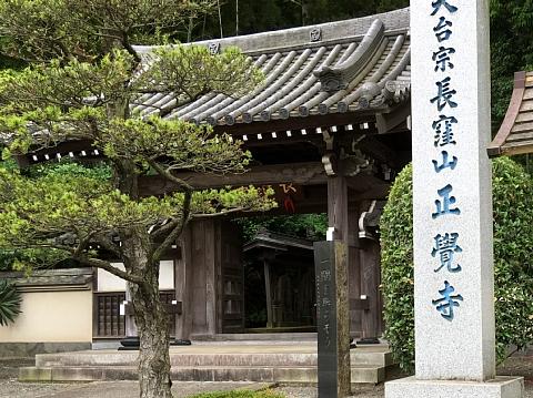 2016syoukakujinoajisai (2).JPG