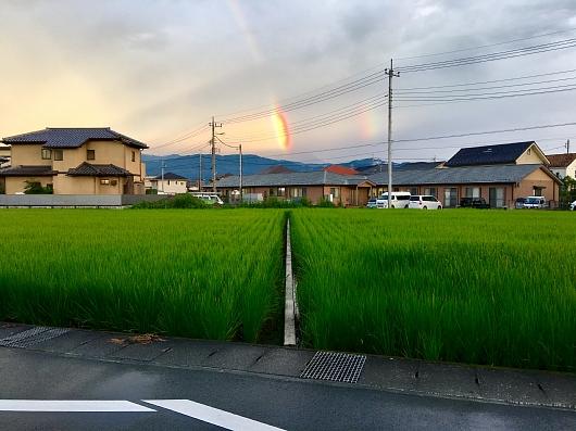 doublereinbow.jpg