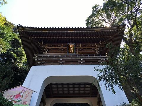 201608enoshimajinjya (2).JPG