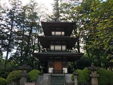 201608erinji (5).JPG