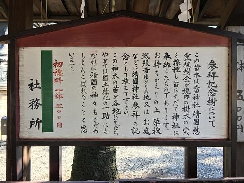 2016yasukuninaegi.JPG