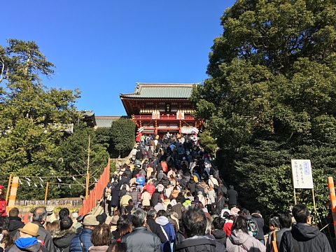 201701tsuruhachi (4).jpg