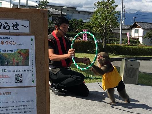 20171008oshiharakouenhurusatohureaimatsuri (7).jpg